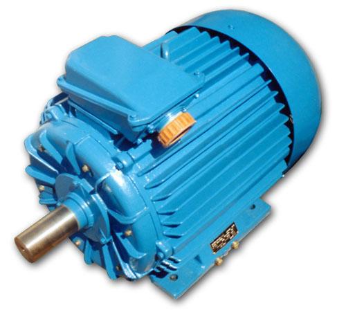 Электродвигатель 5АМ250М8
