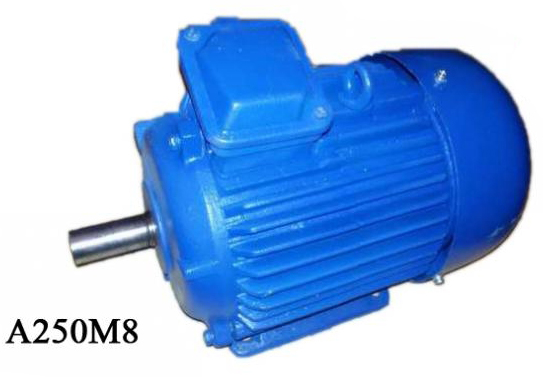 Электродвигатель А250М8